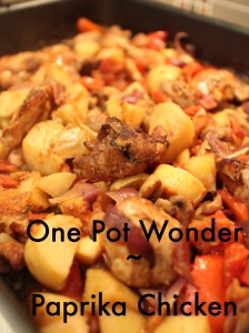 one pot wonder paprika chicken.JPG